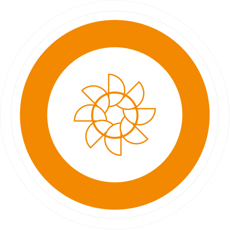 a geometric flower in orange surrounded by a thick orange circle