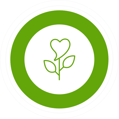 a green heart with a stem and leaves surrounded by a thick green circle